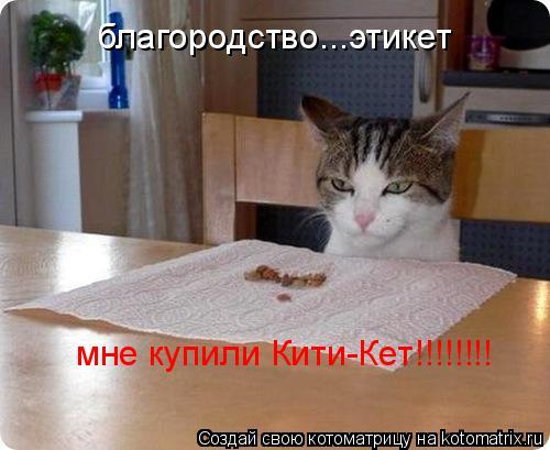 Котоматрица: благородство...этикет мне купили Кити-Кет!!!!!!!!