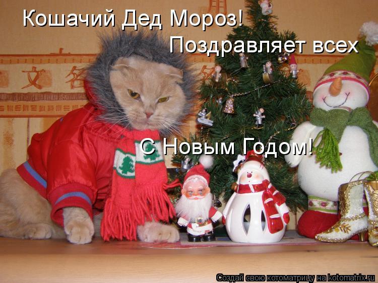 Котоматрица: Кошачий Дед Мороз! Поздравляет всех С Новым Годом!