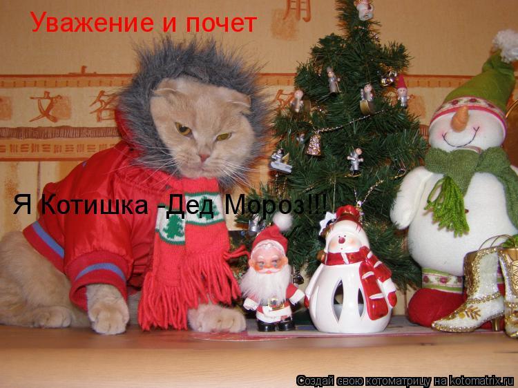 Котоматрица: Уважение и почет  Я Котишка -Дед Мороз!!!