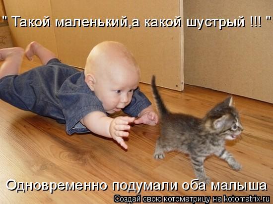 """Котоматрица: """" Такой маленький,а какой шустрый !!! """" Одновременно подумали оба малыша"""