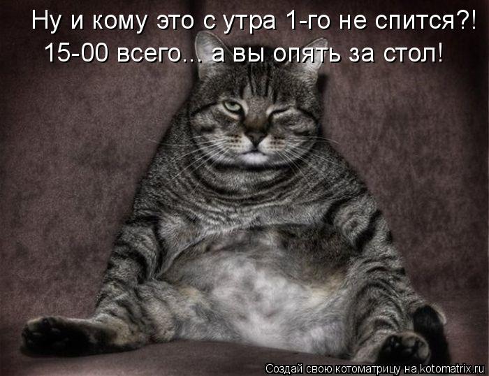 Котоматрица: Ну и кому это с утра 1-го не спится?! 15-00 всего... а вы опять за стол!