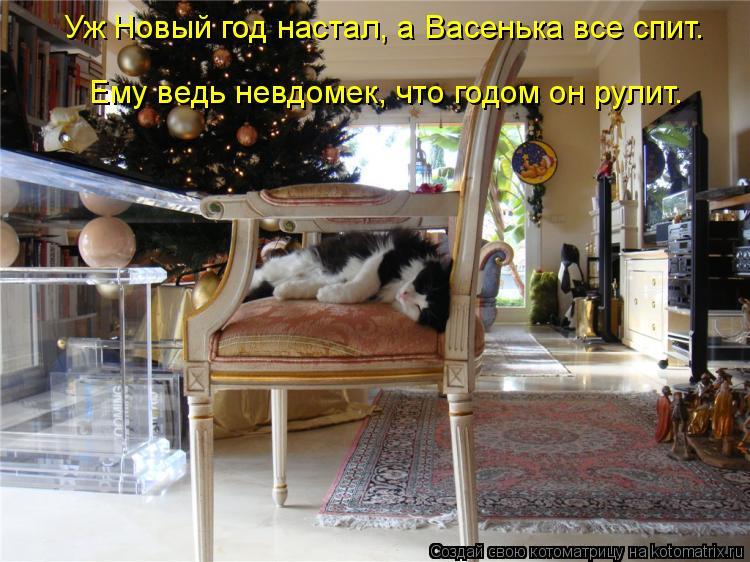 Котоматрица: Уж Новый год настал, а Васенька все спит.  Ему ведь невдомек, что годом он рулит.