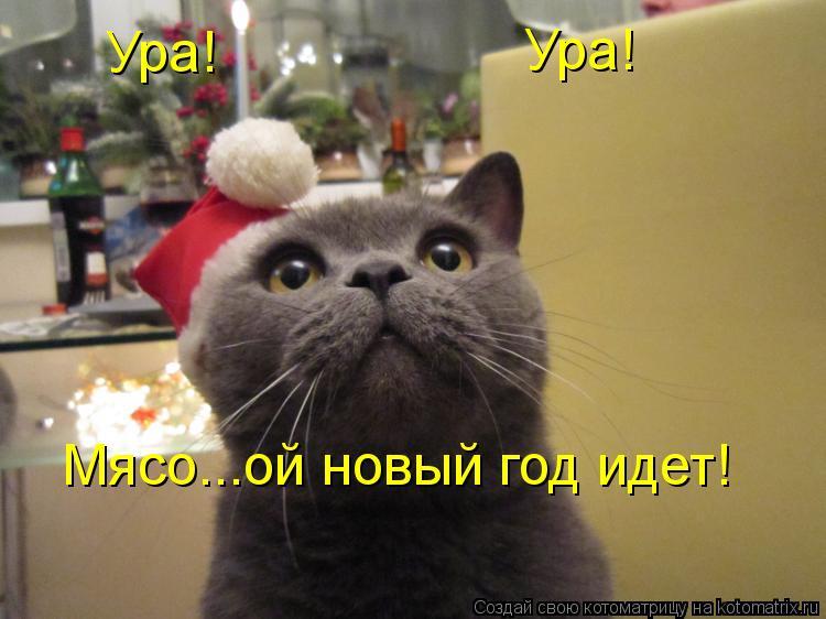 Котоматрица: Ура! Ура! Мясо...ой новый год идет!