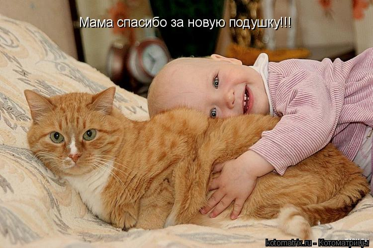 Котоматрица: Мама спасибо за новую подушку!!!