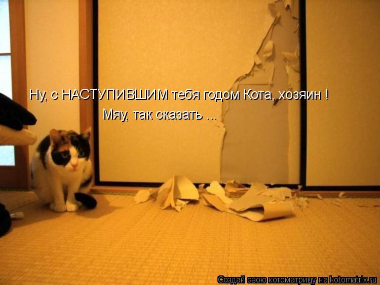 Котоматрица: Ну, с НАСТУПИВШИМ тебя годом Кота, хозяин ! Мяу, так сказать ...