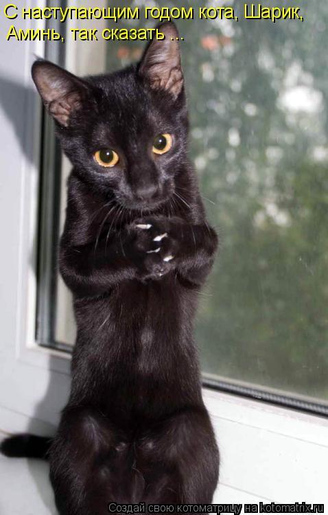 Котоматрица: С наступающим годом кота, Шарик,  Аминь, так сказать ...
