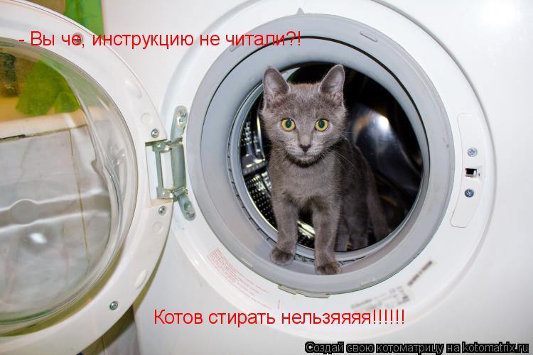 Котоматрица: - Вы че, инструкцию не читали?! Котов стирать нельзяяяя!!!!!!