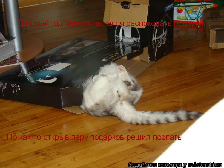 Котоматрица: В новый год Мурзик пытался распоковать подарки... Но как-то открыв пару подарков решил поспать