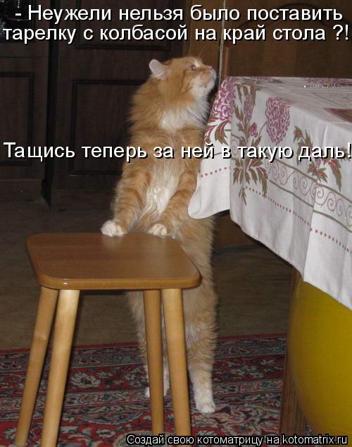 - Неужели нельзя было поставить тарелку с колбасой на край стола ?! Та