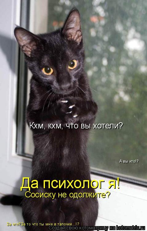 Котоматрица: Кхм, кхм, что вы хотели? А вы кто!? Да психолог я! Сосиску не одолжите? За что?За то что ты мне в тапочки...!?