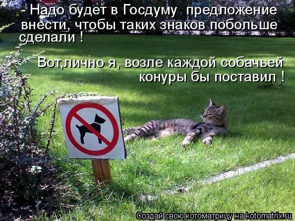 Котоматрица: внести, чтобы таких знаков побольше - Надо будет в Госдуму  предложение сделали ! конуры бы поставил ! Вот,лично я, возле каждой собачьей