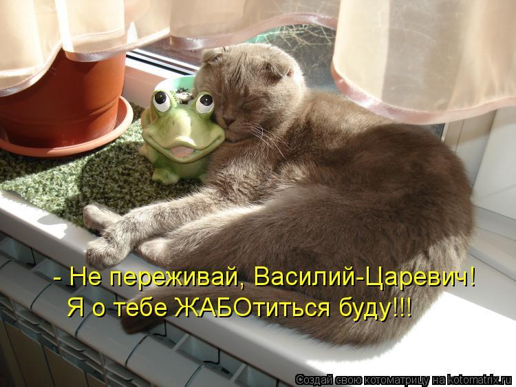 - Не переживай, Василий-Царевич! Я о тебе ЖАБОтиться буду!!!