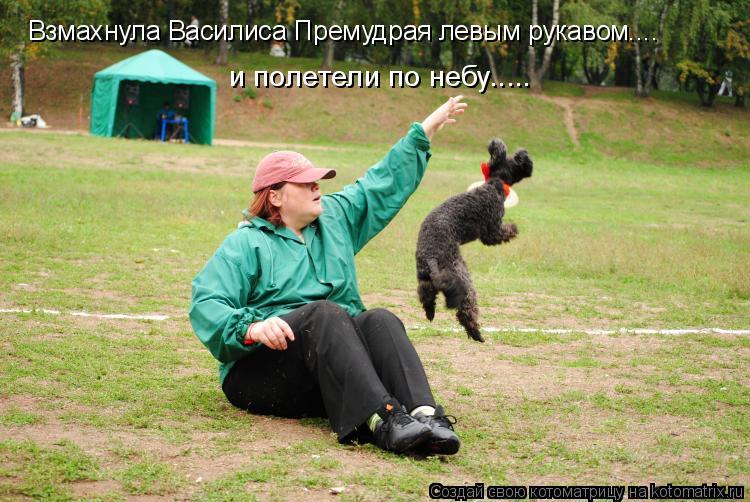 Котоматрица: Взмахнула Василиса Премудрая левым рукавом....   и полетели по небу.....