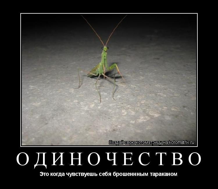 Котоматрица: Одиночество Это когда чувствуешь себя брошеннным тараканом