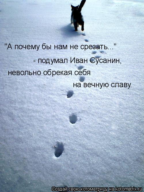 """Котоматрица: """"А почему бы нам не срезать...""""  - подумал Иван Сусанин,  невольно обрекая себя  на вечную славу."""