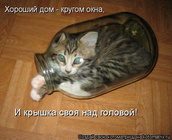 Котоматрица: Хороший дом - кругом окна, И крышка своя над головой!