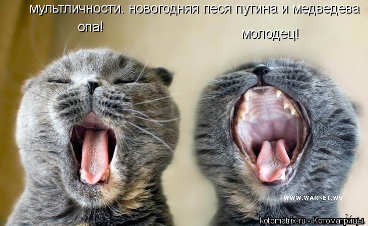 Котоматрица: опа! мультличности. новогодняя песя путина и медведева молодец!