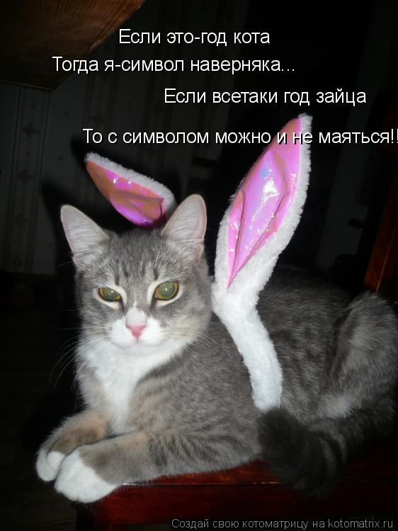 Котоматрица: Если это-год кота Тогда я-символ наверняка... Если всетаки год зайца То с символом можно и не маяться!!!