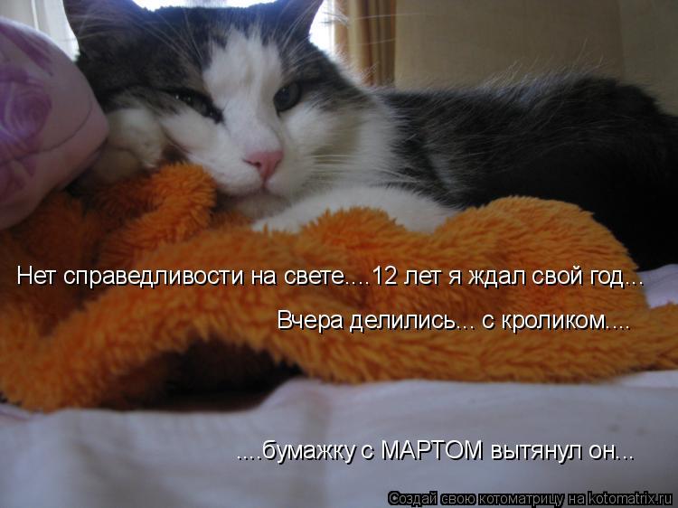Котоматрица: Нет справедливости на свете....12 лет я ждал свой год... Вчера делились... с кроликом.... ....бумажку с МАРТОМ вытянул он...