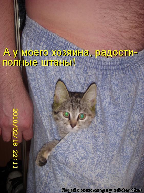 Котоматрица: А у моего хозяина, радости- полные штаны!