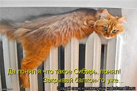 Да понял я что такое Сибирь, понял! Закрывай балкон-то уже...