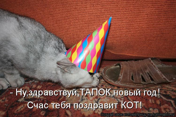 - Ну,здравствуй,ТАПОК,новый год! Счас тебя поздравит КОТ!