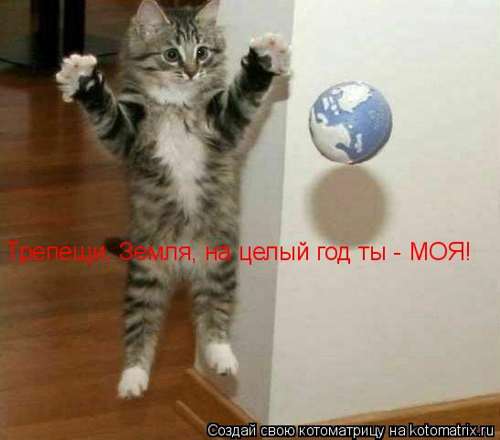 Котоматрица: Трепещи, Земля, на целый год ты - МОЯ!