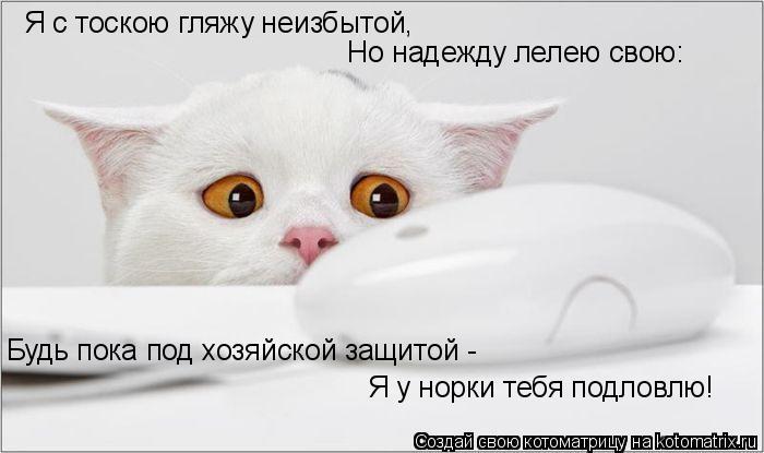 Котоматрица: Я с тоскою гляжу неизбытой, Но надежду лелею свою: Будь пока под хозяйской защитой -  Я у норки тебя подловлю!