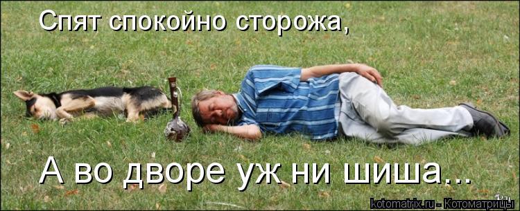 Котоматрица: Спят спокойно сторожа, А во дворе уж ни шиша...