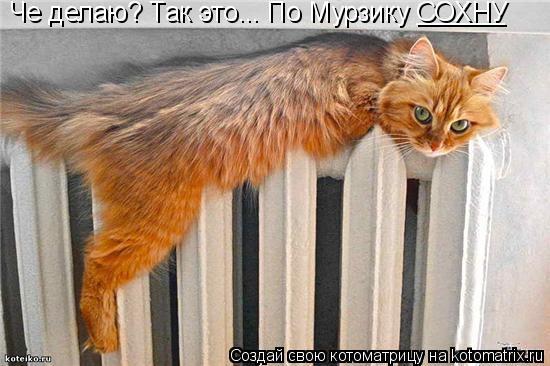http://kotomatrix.ru/images/lolz/2011/01/06/785457.jpg