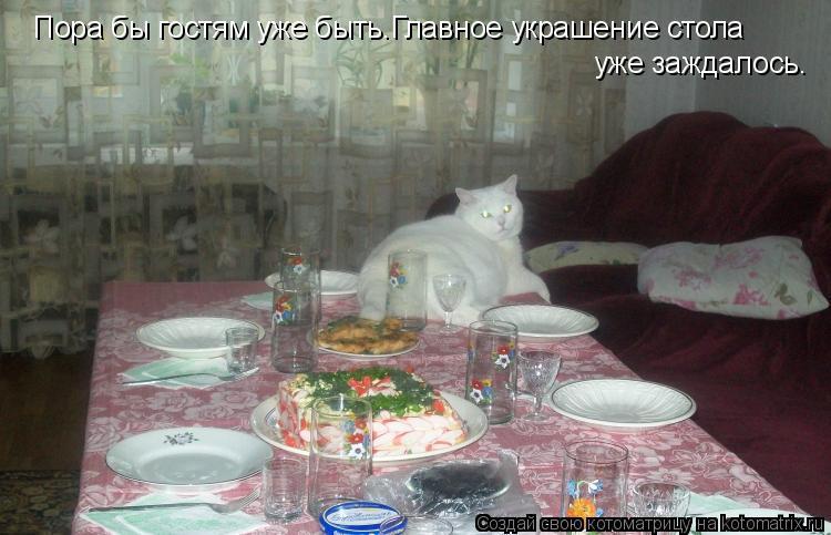 Котоматрица: Пора бы гостям уже быть.Главное украшение стола уже заждалось.