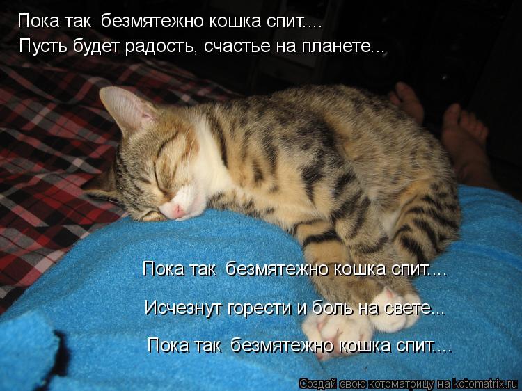 Котоматрица: Пока так  безмятежно кошка спит.... Пока так  безмятежно кошка спит.... Пока так  безмятежно кошка спит.... Пусть будет радость, счастье на плане