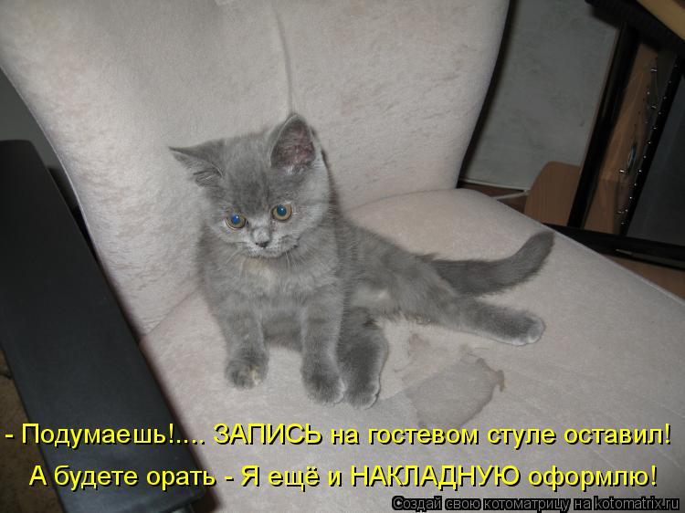 Котоматрица: - Подумаешь!.... ЗАПИСЬ на гостевом стуле оставил! А будете орать - Я ещё и НАКЛАДНУЮ оформлю!