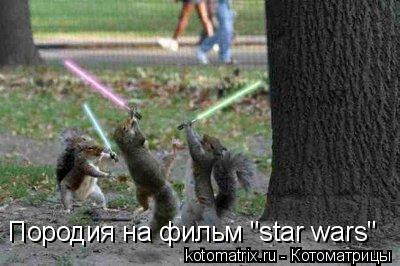 "Котоматрица: Породия на фильм ""star wars"""