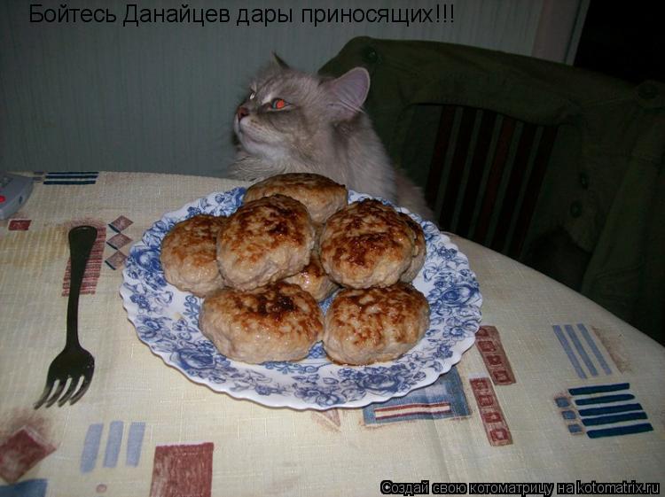 Котоматрица: Бойтесь Данайцев дары приносящих!!!