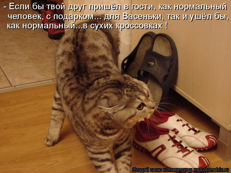 Котоматрица: - Если бы твой друг пришёл в гости, как нормальный человек, с подарком... для Васеньки, так и ушёл бы, как нормальный...в сухих кроссовках !