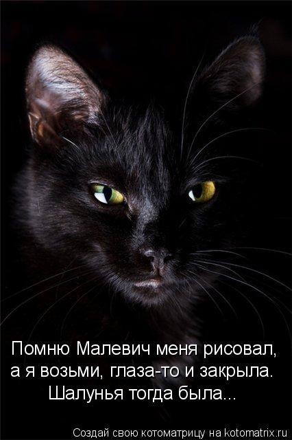 Котоматрица: Помню Малевич меня рисовал, а я возьми, глаза-то и закрыла. Шалунья тогда была...