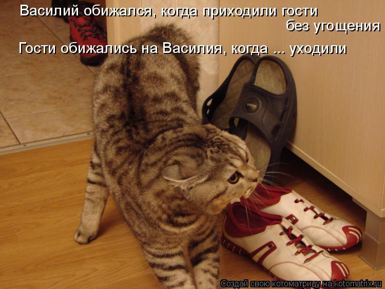 Котоматрица: Василий обижался, когда приходили гости  без угощения Гости обижались на Василия, когда ... уходили