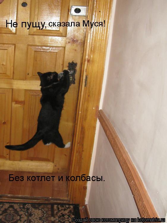 Котоматрица: Не пущу,  сказала Муся! Без котлет и колбасы.