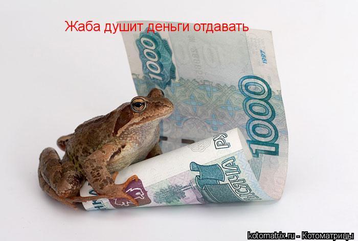 Котоматрица: Жаба душит деньги отдавать