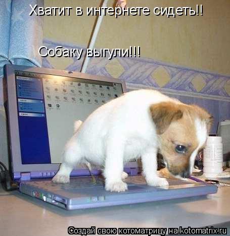 Котоматрица: Хватит в интернете сидеть!! Собаку выгули!!!