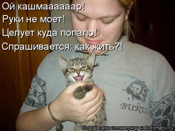 Котоматрица: Ой кашмаааааар! Руки не моет! Спрашивается: как жить?! Целует куда попало!