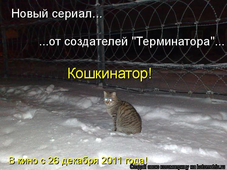 """Котоматрица: Новый сериал... ...от создателей """"Терминатора""""... Кошкинатор! В кино с 26 декабря 2011 года!"""