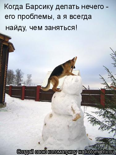 Котоматрица: Когда Барсику делать нечего -  его проблемы, а я всегда найду, чем заняться!