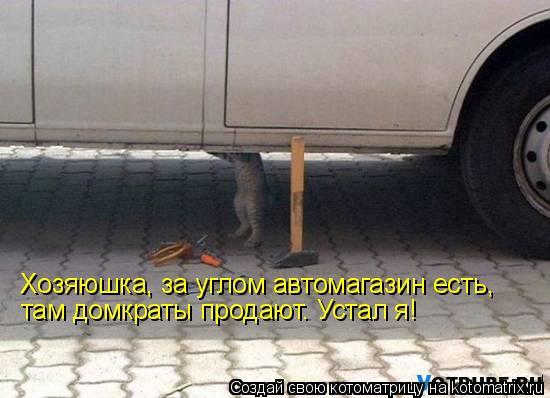 Котоматрица: Хозяюшка, за углом автомагазин есть, там домкраты продают. Устал я!