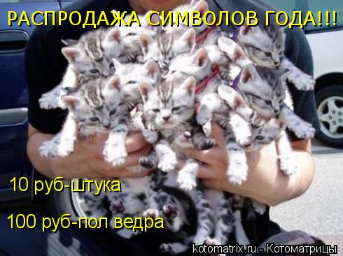 Котоматрица: РАСПРОДАЖА СИМВОЛОВ ГОДА!!! 10 руб-штука 100 руб-пол ведра