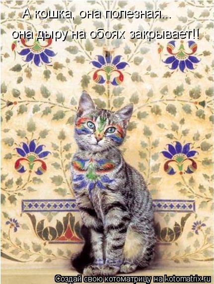 Котоматрица: А кошка, она полезная... она дыру на обоях закрывает!!