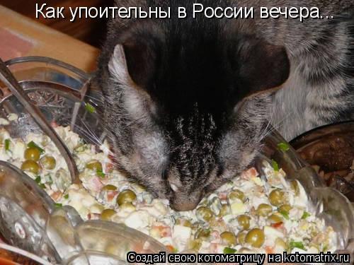 Котоматрица: Как упоительны в России вечера...