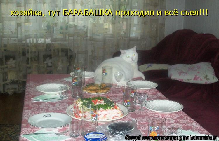 Котоматрица: хозяйка, тут БАРАБАШКА приходил и всё съел!!!