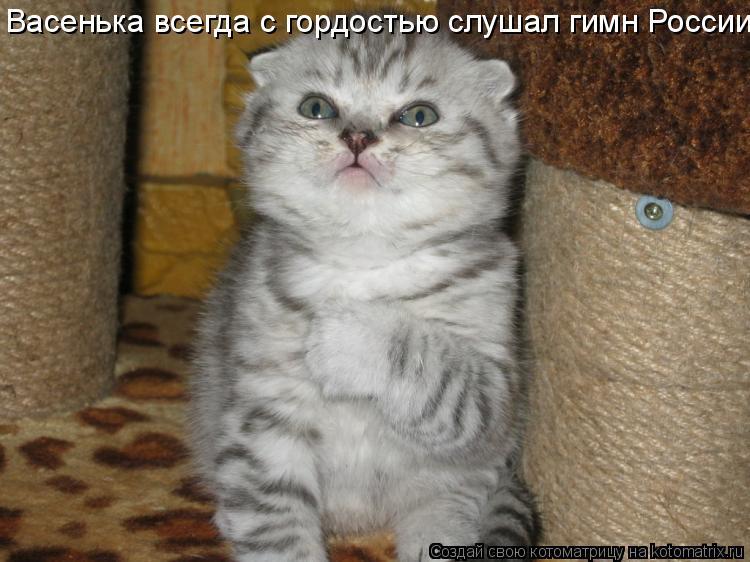 Котоматрица: Васенька всегда с гордостью слушал гимн России